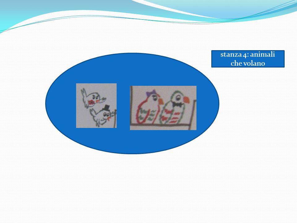 stanza 4: animali che volano