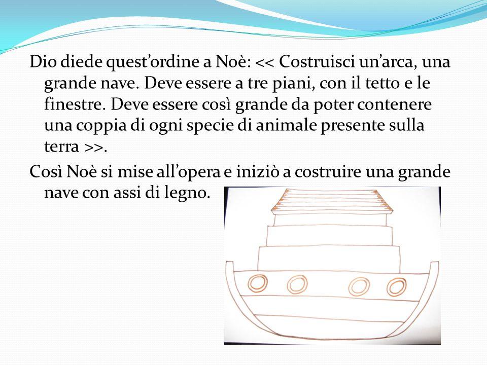 Dio diede quest'ordine a Noè: >. Così Noè si mise all'opera e iniziò a costruire una grande nave con assi di legno.