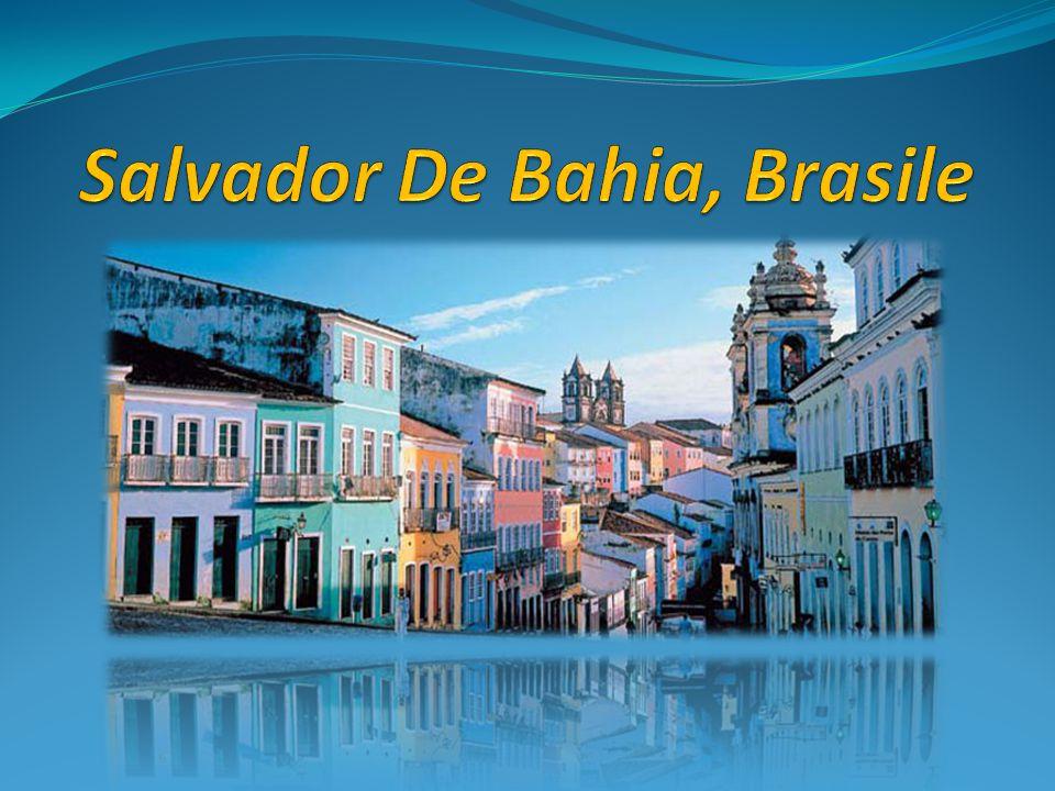 Per conoscere il Brasile… Per conoscere il Brasile … Porta con te solo l'indispensabile, metti in valigia vestiti leggeri e colorati, lascia a casa cappotti, scarpe costose e libri di lettura, non avrai tempo per questo Per conoscere il Brasile … Dovrai abbandonare molte idee preconcette, dovrai lasciar perdere stereotipi, pregiudizi, ignoranza, ottusità e qualunque altra resistenza psicologica o culturale ed essere pronto a lasciarti sorprendere.