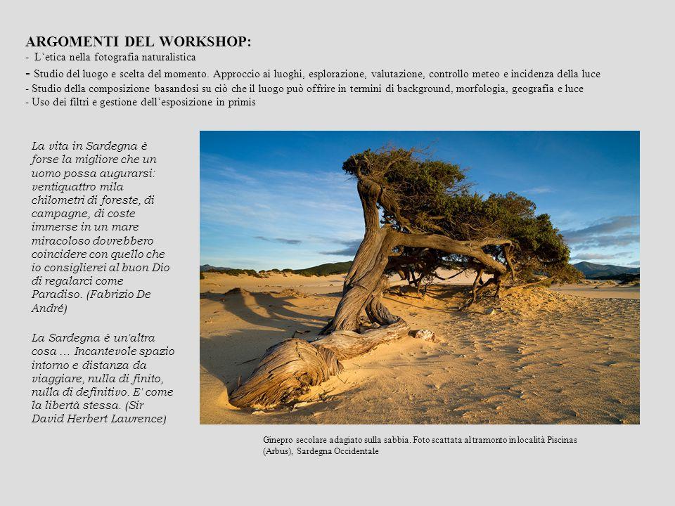 ARGOMENTI DEL WORKSHOP: - L'etica nella fotografia naturalistica - Studio del luogo e scelta del momento.