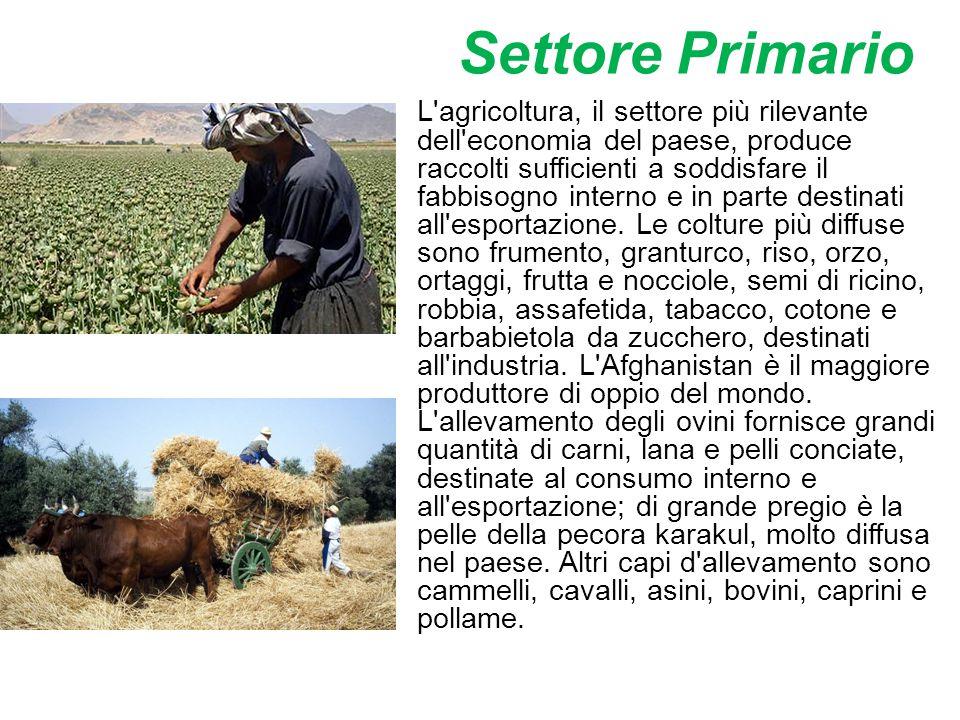 Settore Primario L'agricoltura, il settore più rilevante dell'economia del paese, produce raccolti sufficienti a soddisfare il fabbisogno interno e in
