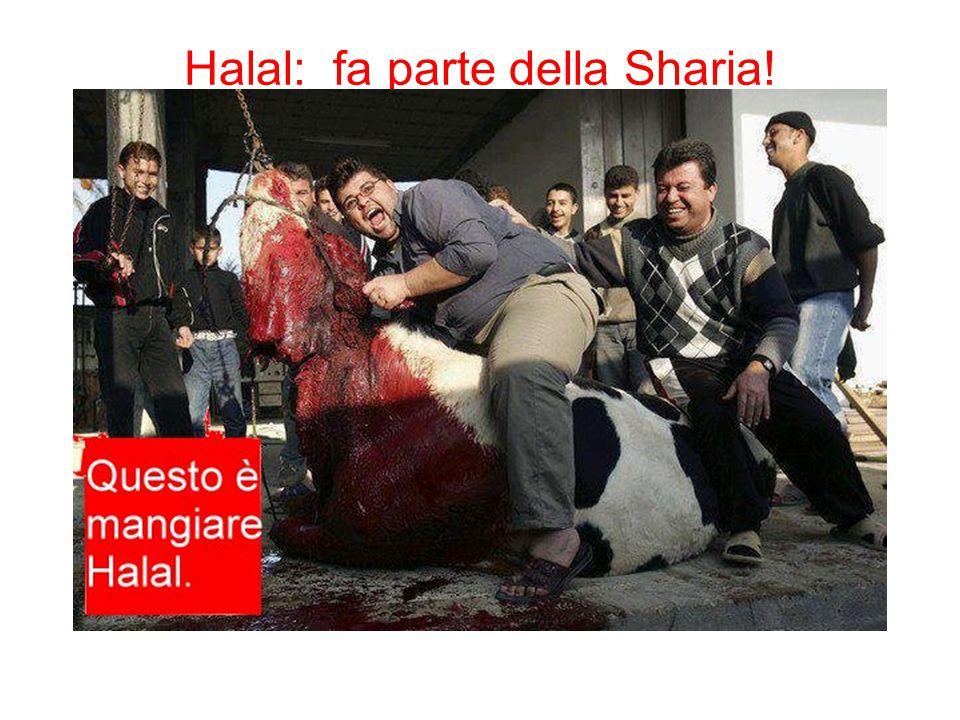 Halal: fa parte della Sharia!