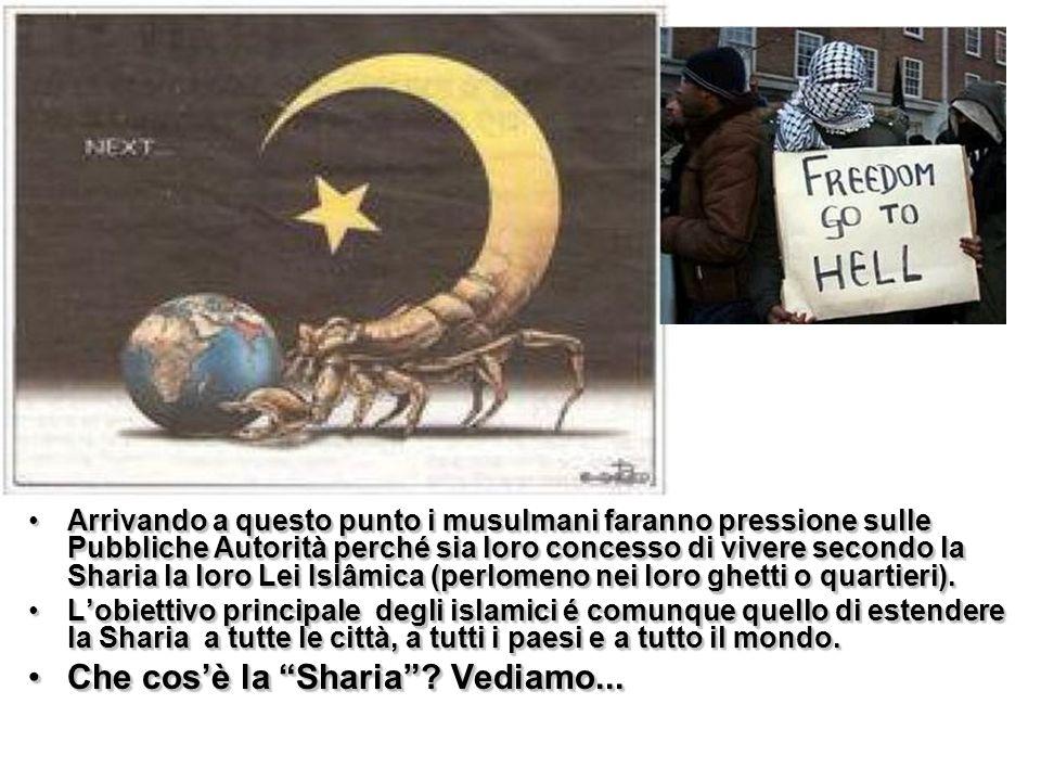Questo è la Sharia .