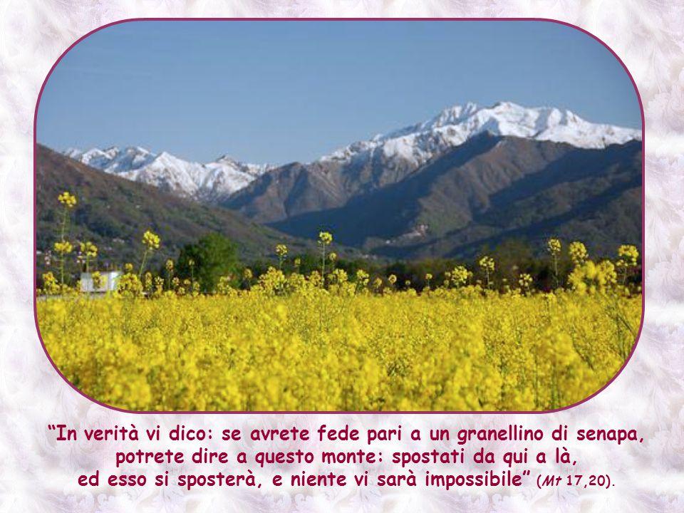 E questa fede, che quindi sposta le montagne, non è riservata a qualche persona eccezionale.
