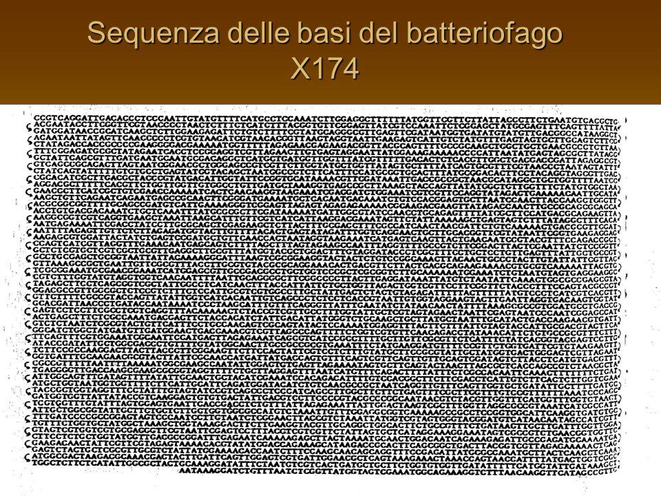 Sfruttamento di sé – il caso italiano Art.10 n. 4 DPR 1972 n.