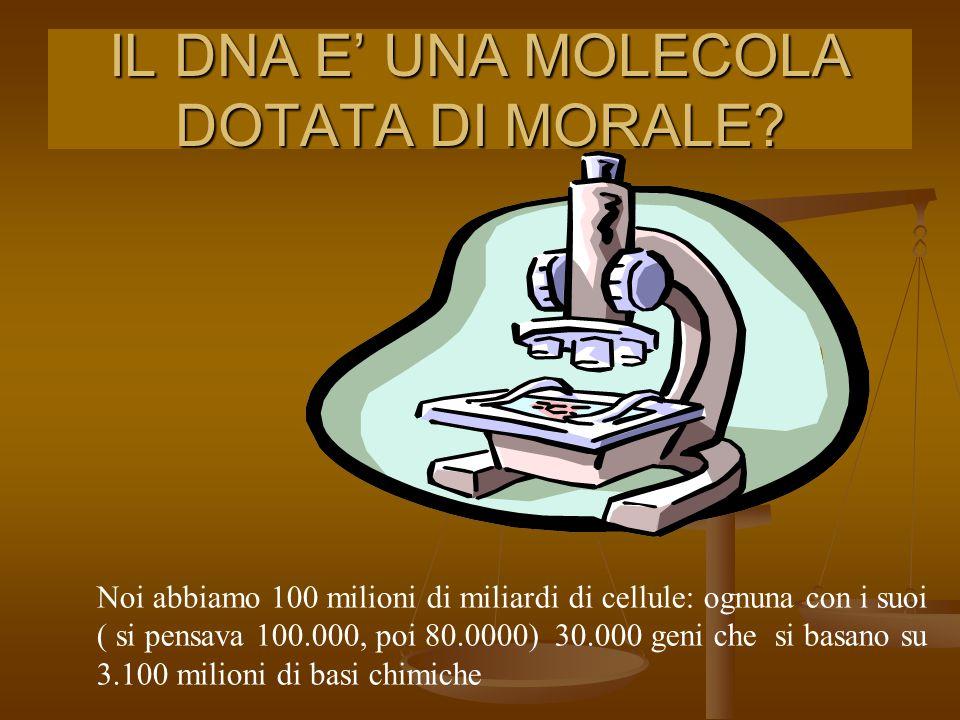 IL DNA E' UNA MOLECOLA DOTATA DI MORALE.
