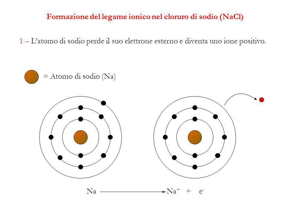 Formazione del legame ionico nel cloruro di sodio (NaCl) 1 – L'atomo di sodio perde il suo elettrone esterno e diventa uno ione positivo.