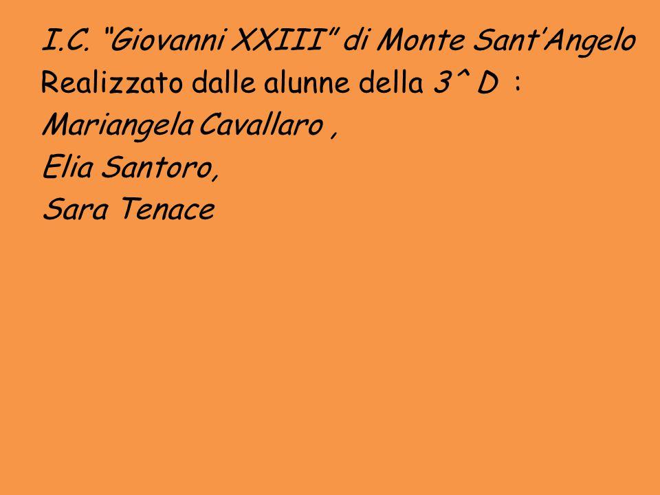 """I.C. """"Giovanni XXIII"""" di Monte Sant'Angelo Realizzato dalle alunne della 3^ D : Mariangela Cavallaro, Elia Santoro, Sara Tenace"""