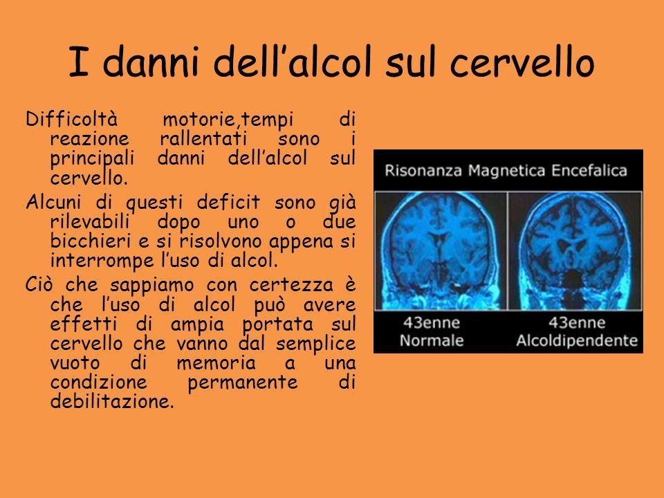 I danni dell'alcol sul cervello Difficoltà motorie,tempi di reazione rallentati sono i principali danni dell'alcol sul cervello. Alcuni di questi defi