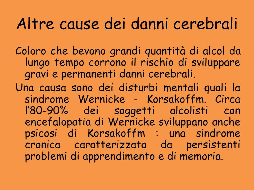 Altre cause dei danni cerebrali Coloro che bevono grandi quantità di alcol da lungo tempo corrono il rischio di sviluppare gravi e permanenti danni ce