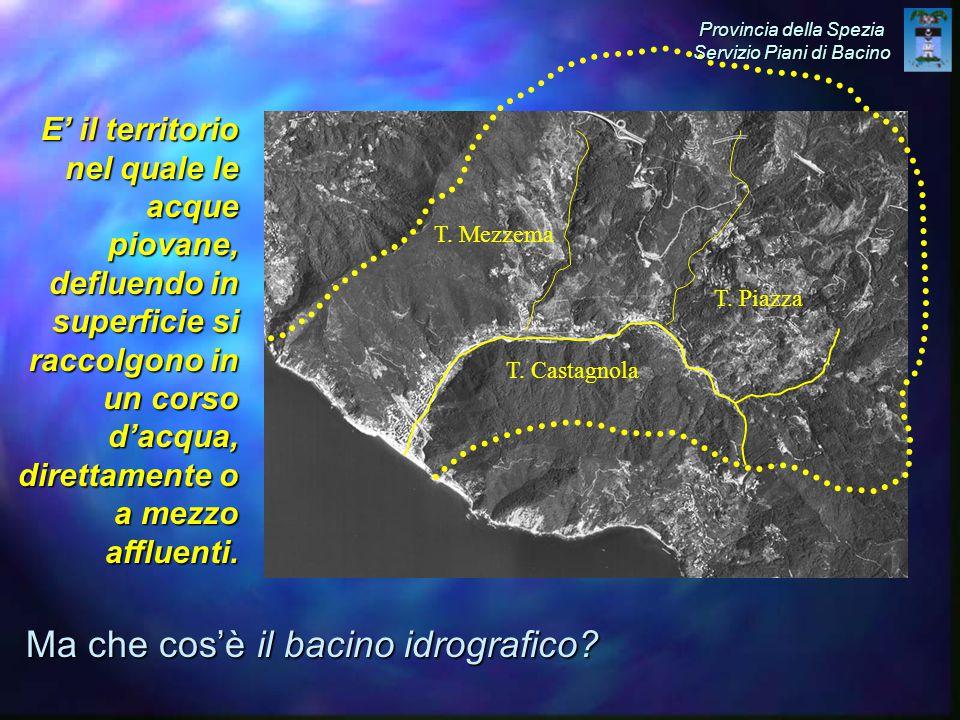 Ma che cos'è il bacino idrografico.T. Castagnola T.