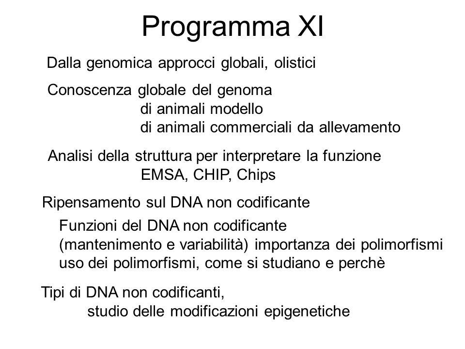 Programma XI Dalla genomica approcci globali, olistici Conoscenza globale del genoma di animali modello di animali commerciali da allevamento Analisi