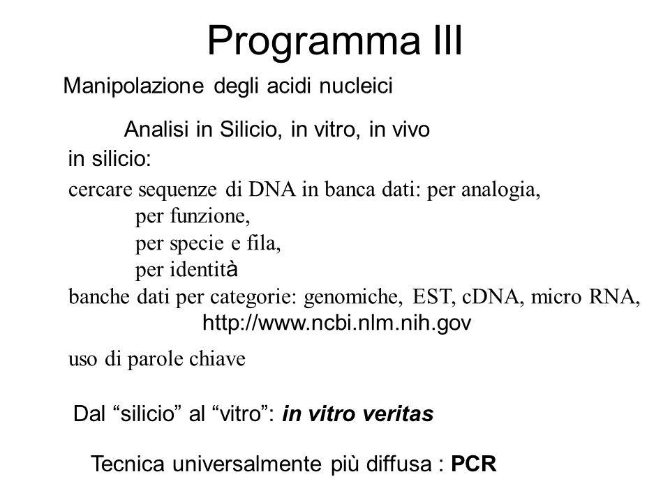 Programma III cercare sequenze di DNA in banca dati: per analogia, per funzione, per specie e fila, per identit à banche dati per categorie: genomiche