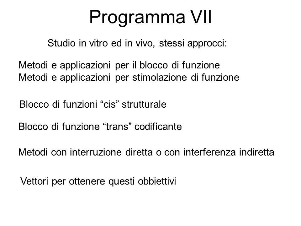"""Programma VII Metodi e applicazioni per il blocco di funzione Metodi e applicazioni per stimolazione di funzione Blocco di funzioni """"cis"""" strutturale"""