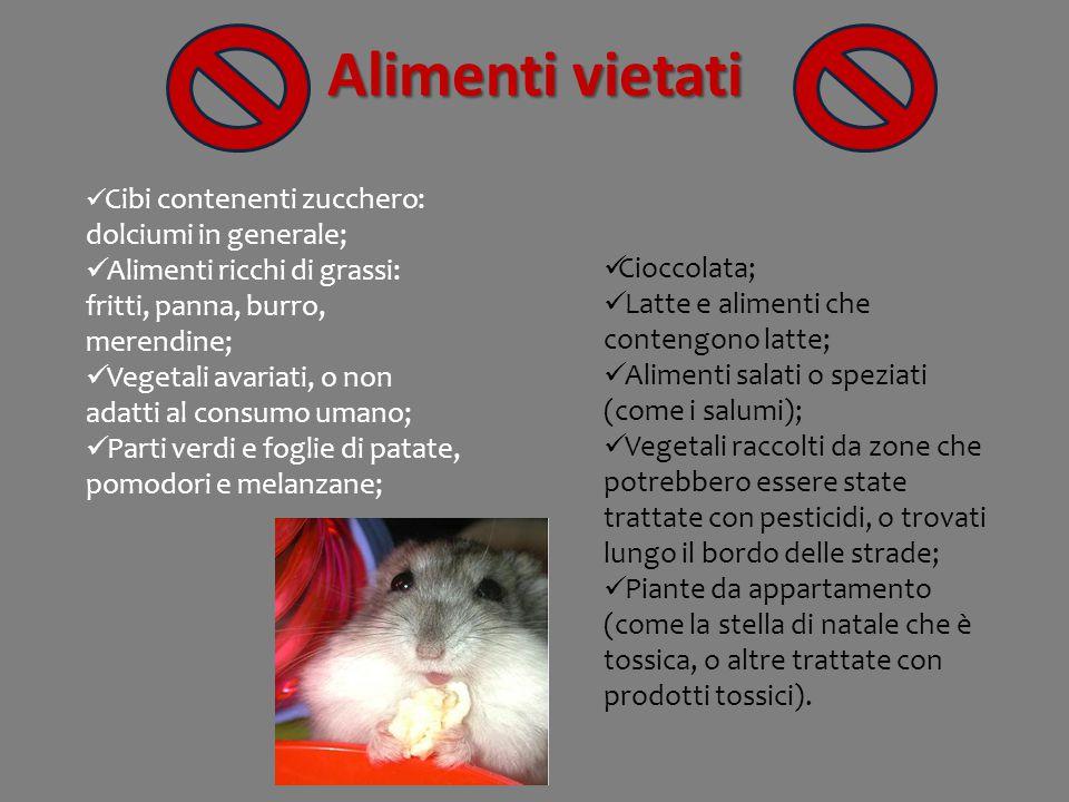 Alimenti vietati Cioccolata; Latte e alimenti che contengono latte; Alimenti salati o speziati (come i salumi); Vegetali raccolti da zone che potrebbe