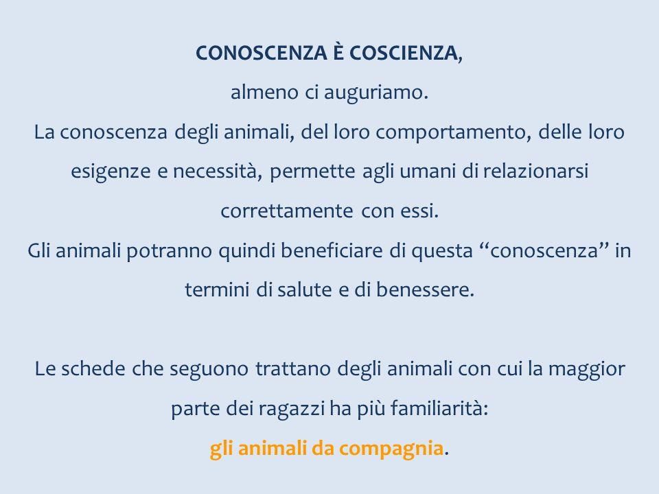 CONOSCENZA È COSCIENZA, almeno ci auguriamo. La conoscenza degli animali, del loro comportamento, delle loro esigenze e necessità, permette agli umani