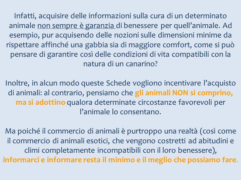 Infatti, acquisire delle informazioni sulla cura di un determinato animale non sempre è garanzia di benessere per quell'animale. Ad esempio, pur acqui