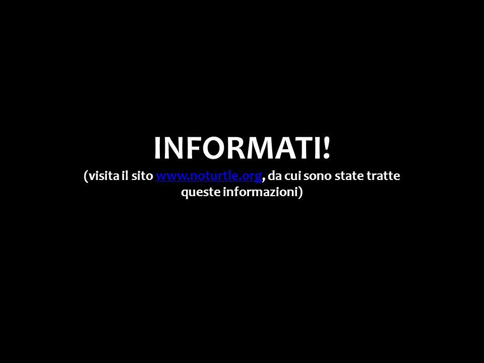 INFORMATI! (visita il sito www.noturtle.org, da cui sono state tratte queste informazioni)www.noturtle.org