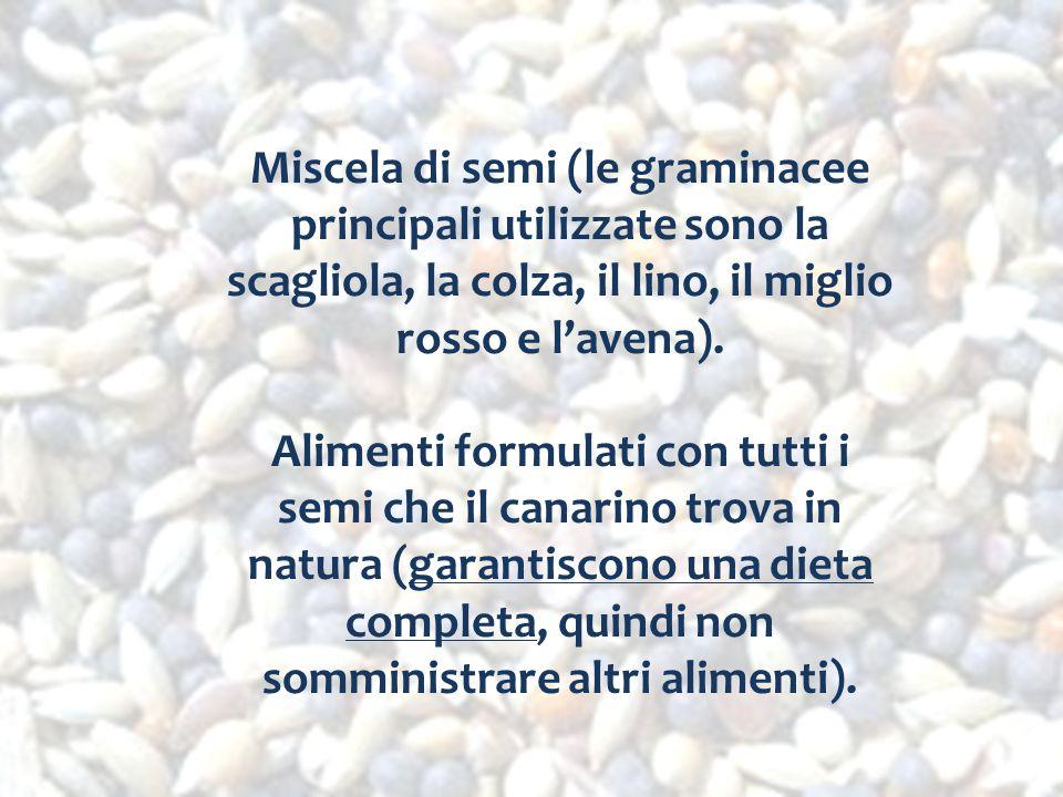 Miscela di semi (le graminacee principali utilizzate sono la scagliola, la colza, il lino, il miglio rosso e l'avena). Alimenti formulati con tutti i
