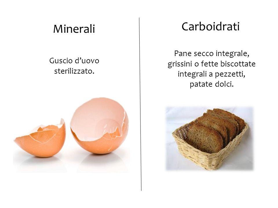 Guscio d'uovo sterilizzato. Pane secco integrale, grissini o fette biscottate integrali a pezzetti, patate dolci. Minerali Carboidrati