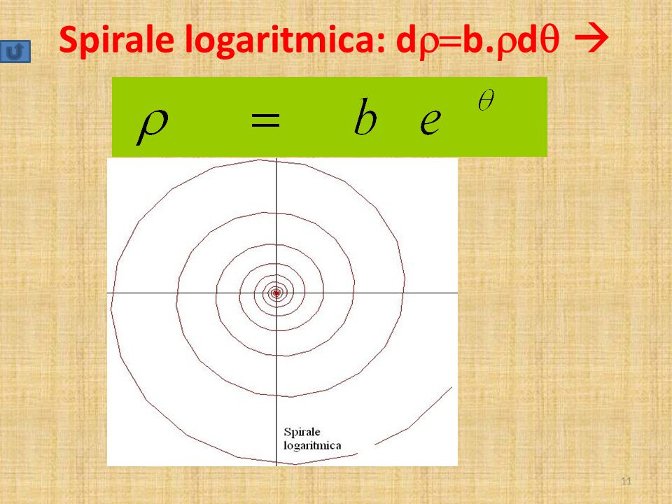 Spirale logaritmica: d  b.  d   11