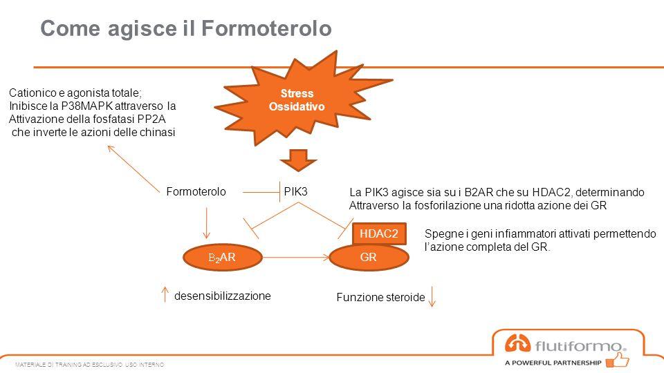 Come agisce il Formoterolo MATERIALE DI TRAINING AD ESCLUSIVO USO INTERNO Stress Ossidativo PIK3  2 AR GR desensibilizzazione Funzione steroide Formo