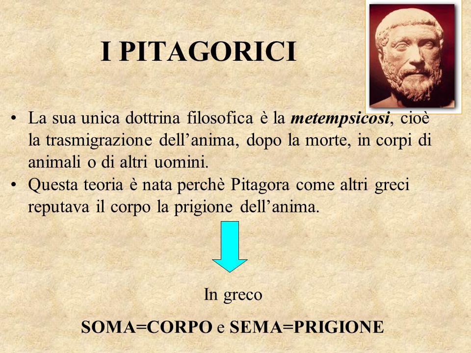 I PITAGORICI La sua unica dottrina filosofica è la metempsicosi, cioè la trasmigrazione dell'anima, dopo la morte, in corpi di animali o di altri uomi