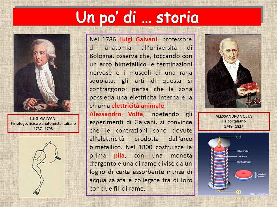 Nel 1786 Luigi Galvani, professore di anatomia all'università di Bologna, osserva che, toccando con un arco bimetallico le terminazioni nervose e i mu