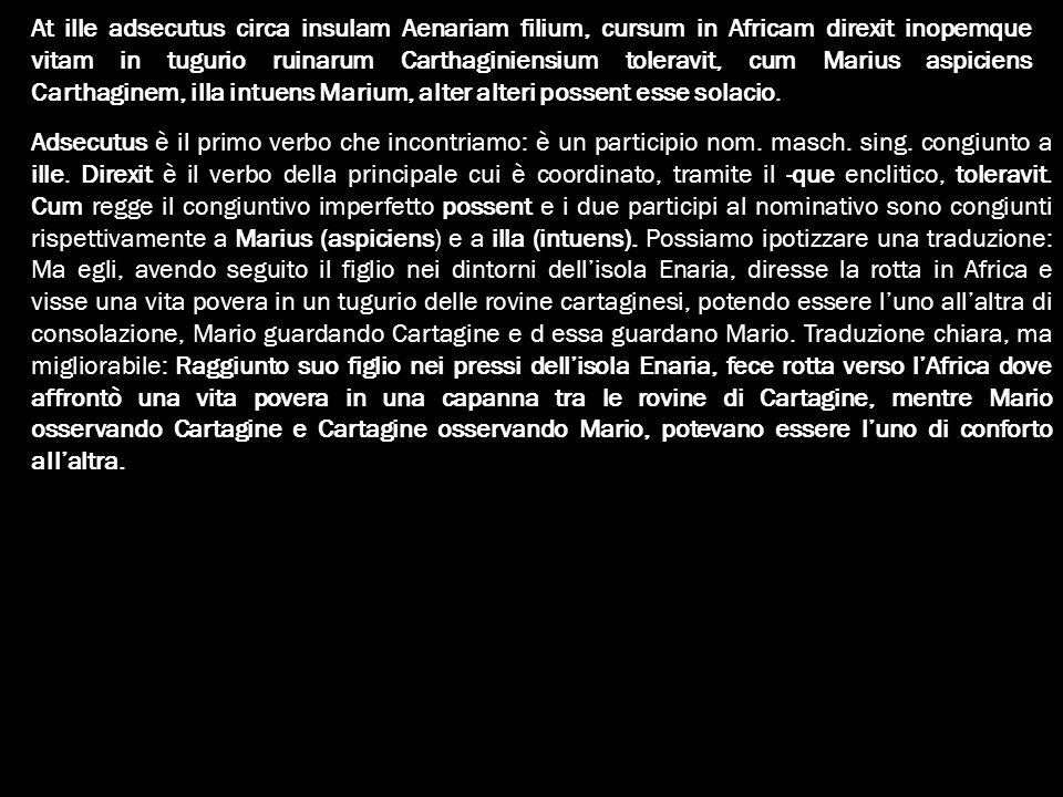 At ille adsecutus circa insulam Aenariam filium, cursum in Africam direxit inopemque vitam in tugurio ruinarum Carthaginiensium toleravit, cum Marius