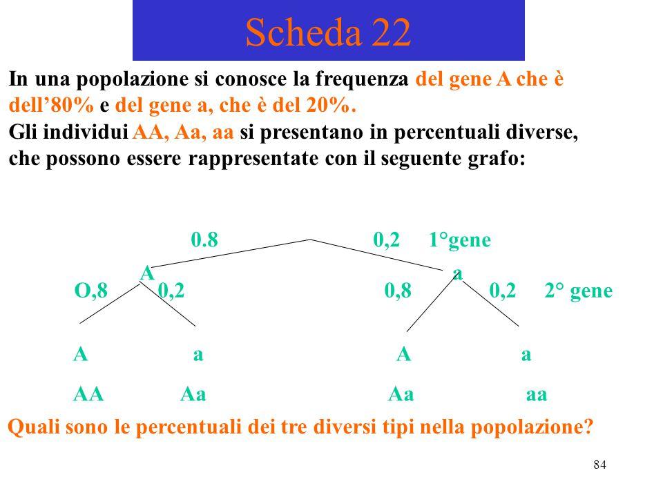 84 Scheda 22 In una popolazione si conosce la frequenza del gene A che è dell'80% e del gene a, che è del 20%. Gli individui AA, Aa, aa si presentano