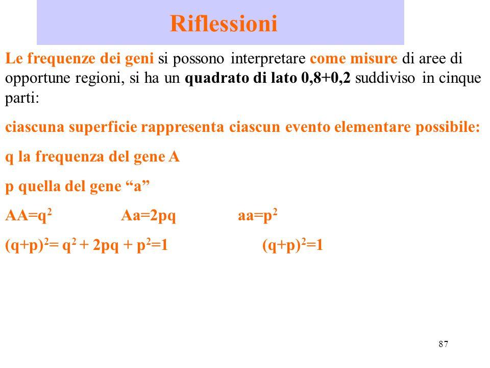 87 Riflessioni Le frequenze dei geni si possono interpretare come misure di aree di opportune regioni, si ha un quadrato di lato 0,8+0,2 suddiviso in