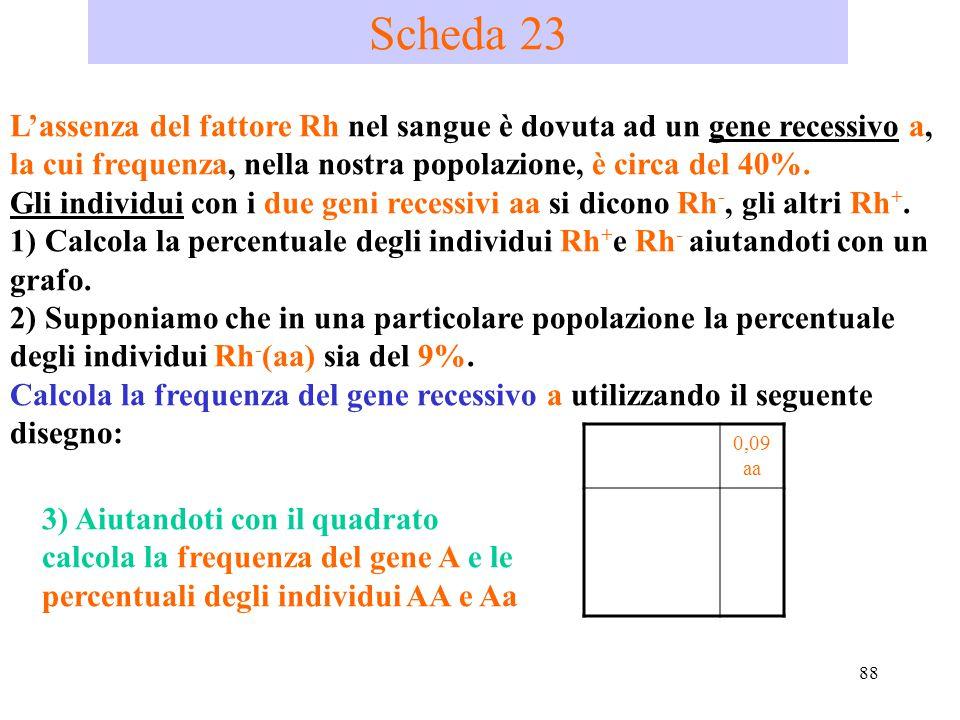 88 Scheda 23 L'assenza del fattore Rh nel sangue è dovuta ad un gene recessivo a, la cui frequenza, nella nostra popolazione, è circa del 40%. Gli ind