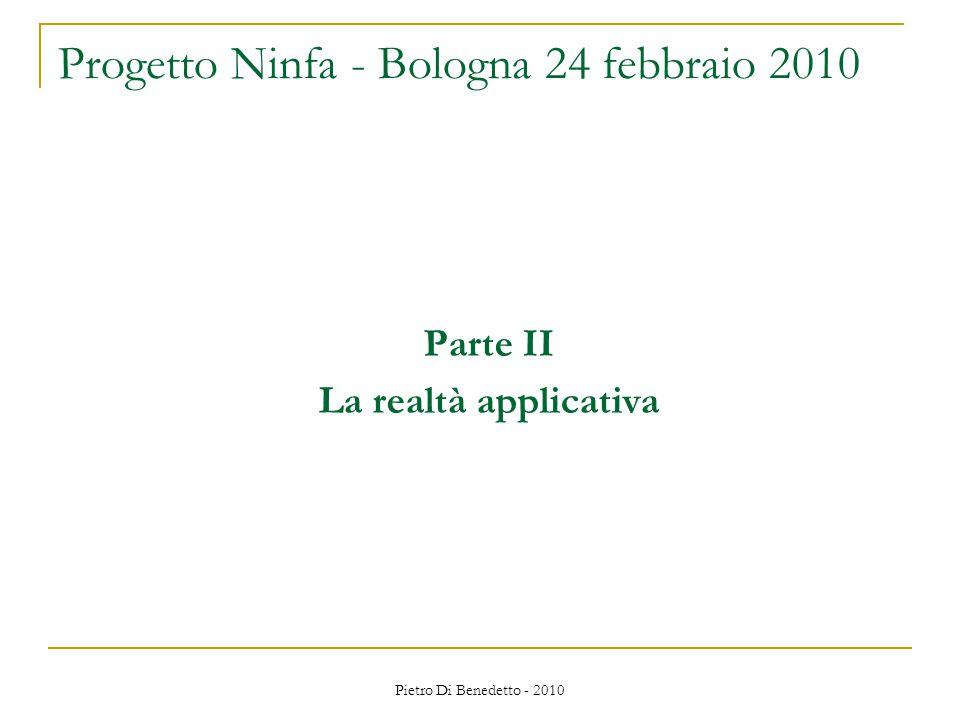 Pietro Di Benedetto - 2010 Parte II La realtà applicativa Progetto Ninfa - Bologna 24 febbraio 2010