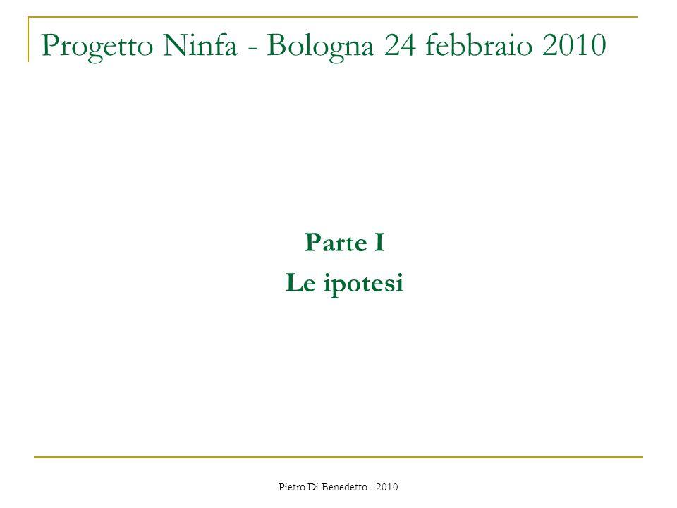 Pietro Di Benedetto - 2010 Parte I Le ipotesi Progetto Ninfa - Bologna 24 febbraio 2010