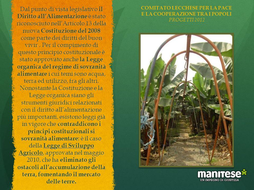 Dal punto di vista legislativo il Diritto all'Alimentazione è stato riconosciuto nell'Articolo 13 della nuova Costituzione del 2008 come parte dei dir