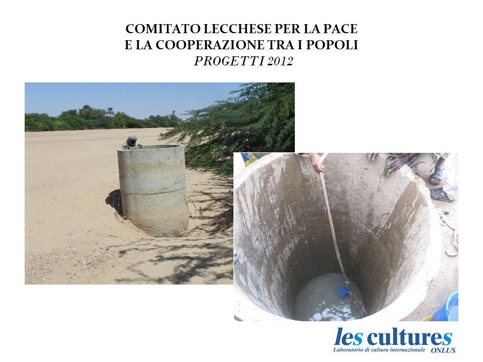 L'elemento di innovazione è legato allo sviluppo di una ricerca che coinvolga docenti e ricercatori del Politecnico di Milano – Polo Territoriale di Lecco e i colleghi dell'Università di Niamey.