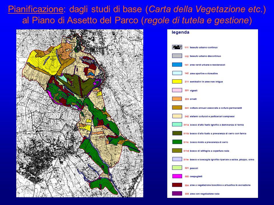 Pianificazione: dagli studi di base (Carta della Vegetazione etc.) al Piano di Assetto del Parco (regole di tutela e gestione)
