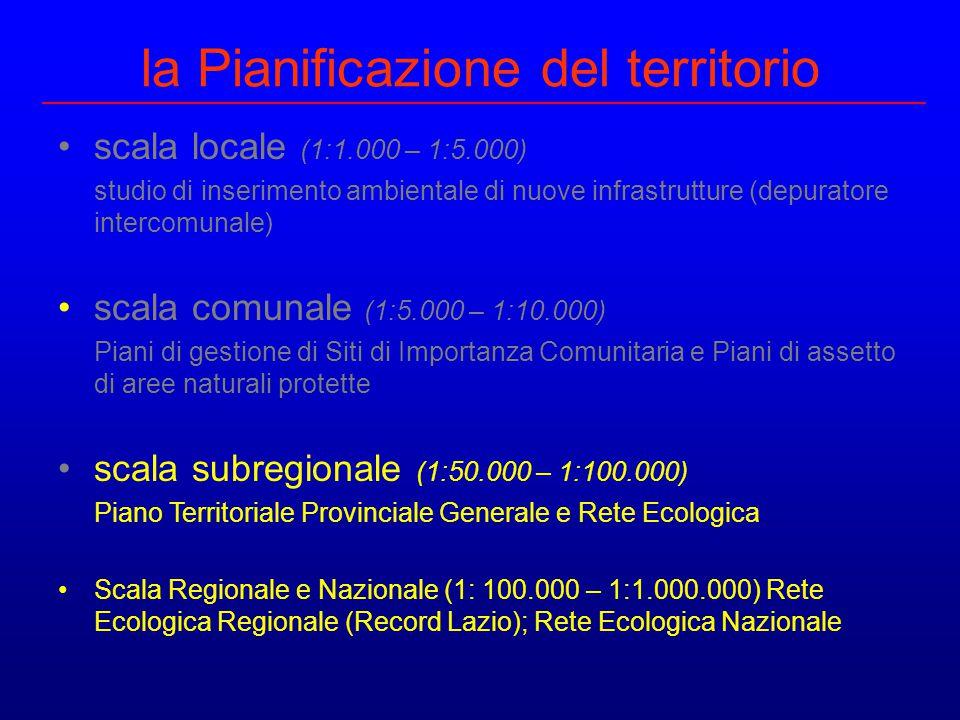 la Pianificazione del territorio scala locale (1:1.000 – 1:5.000) studio di inserimento ambientale di nuove infrastrutture (depuratore intercomunale)