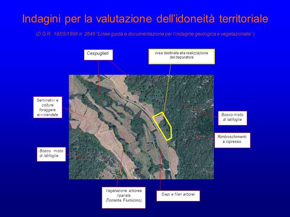 "Indagini per la valutazione dell'idoneità territoriale (D.G.R. 18/05/1999 n. 2649 ""Linee guida e documentazione per l'indagine geologica e vegetaziona"