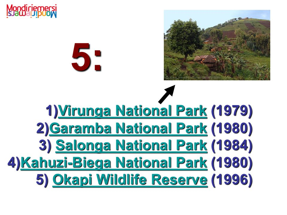1)Virunga National Park (1979) 2)Garamba National Park (1980) 3) Salonga National Park (1984) 4)Kahuzi-Biega National Park (1980) 5) Okapi Wildlife Re