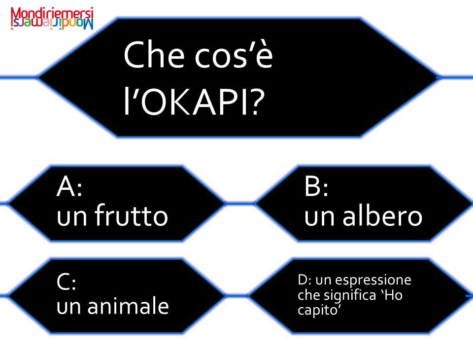 Che cos'è l'OKAPI.