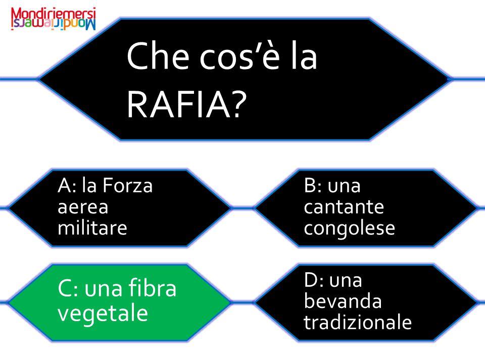 Che cos'è la RAFIA.