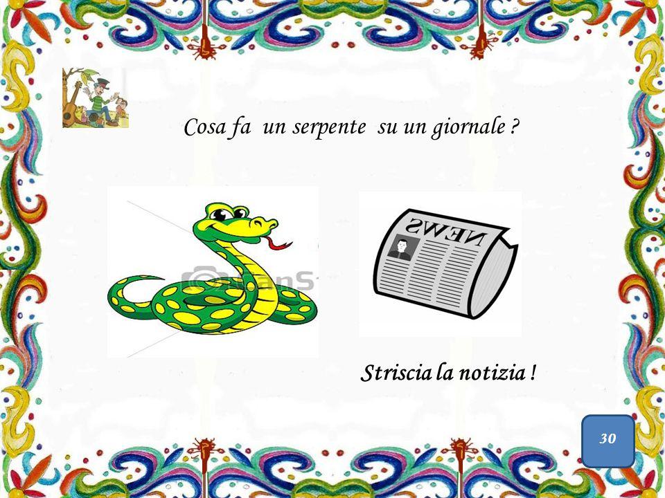 Cosa fa un ragno nello zucchero.Lo zucchero filato Cosa fa un serpente su un giornale .