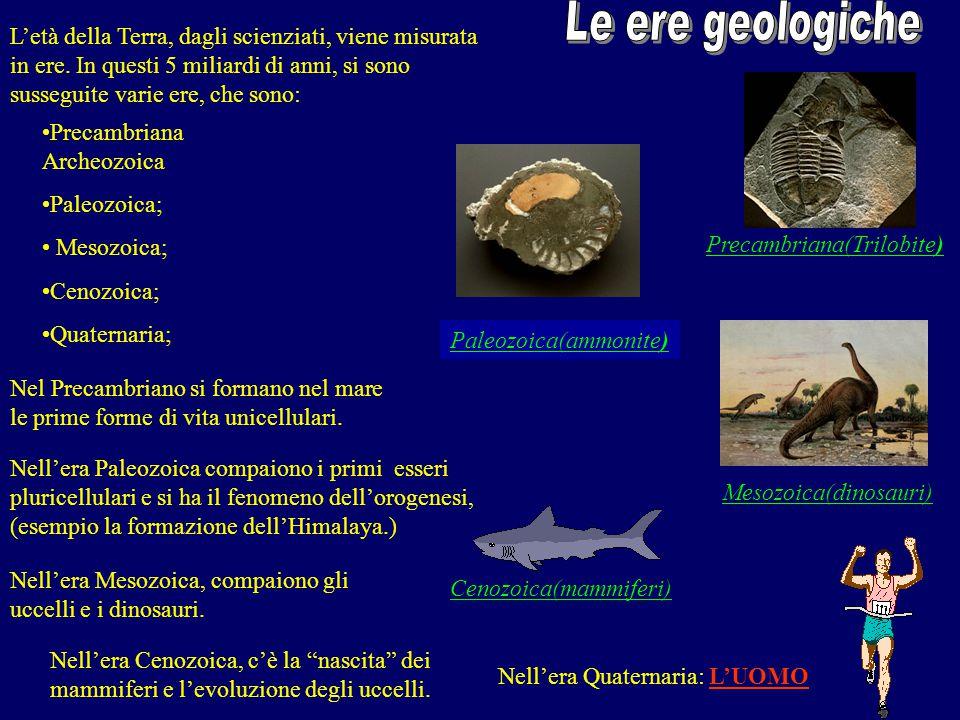 Cenozoica(mammiferi) Mesozoica(dinosauri) Paleozoica(ammonite) Precambriana(Trilobite) Nell'era Quaternaria: L'UOMO L'età della Terra, dagli scienziat