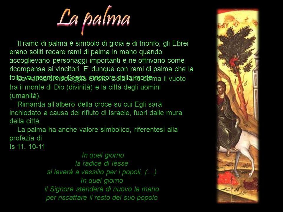 Il ramo di palma è simbolo di gioia e di trionfo; gli Ebrei erano soliti recare rami di palma in mano quando accoglievano personaggi importanti e ne o