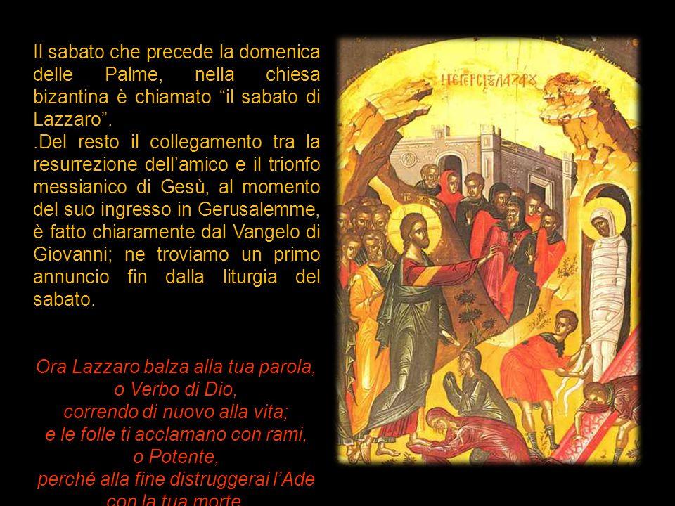 """Il sabato che precede la domenica delle Palme, nella chiesa bizantina è chiamato """"il sabato di Lazzaro""""..Del resto il collegamento tra la resurrezione"""