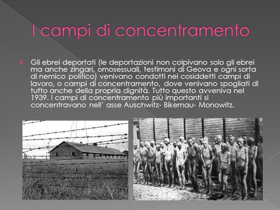  Gli ebrei deportati (le deportazioni non colpivano solo gli ebrei ma anche zingari, omosessuali, testimoni di Geova e ogni sorta di nemico politico)
