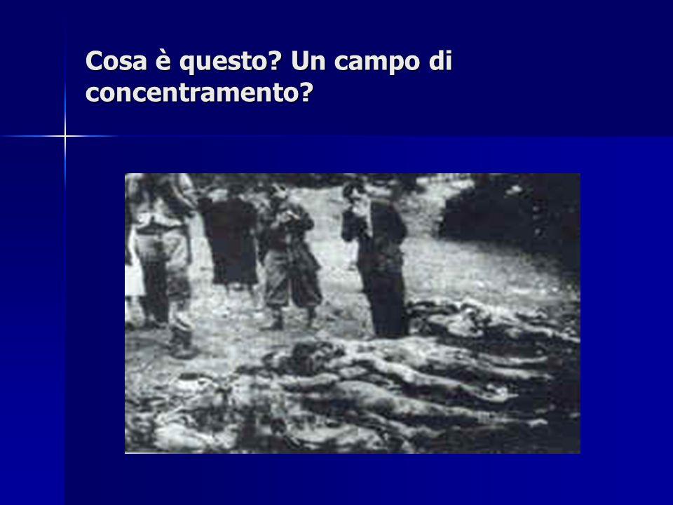 Cosa è questo? Un campo di concentramento?
