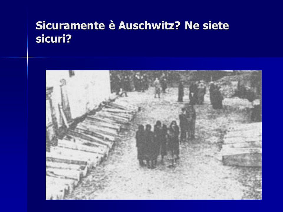 Sicuramente è Auschwitz? Ne siete sicuri?