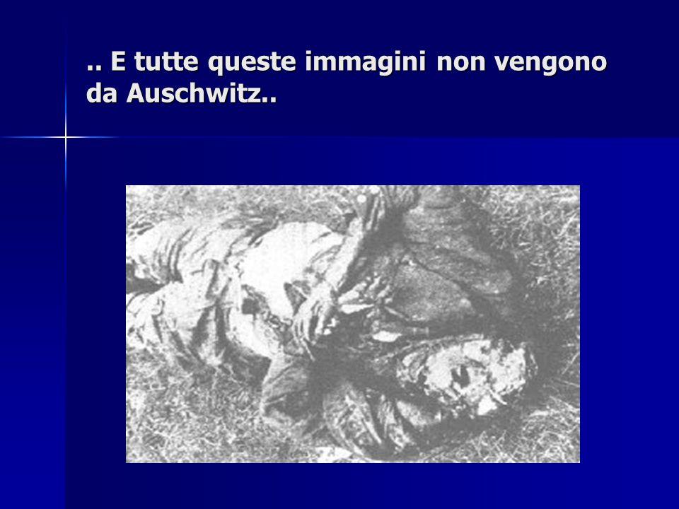 .. E tutte queste immagini non vengono da Auschwitz..